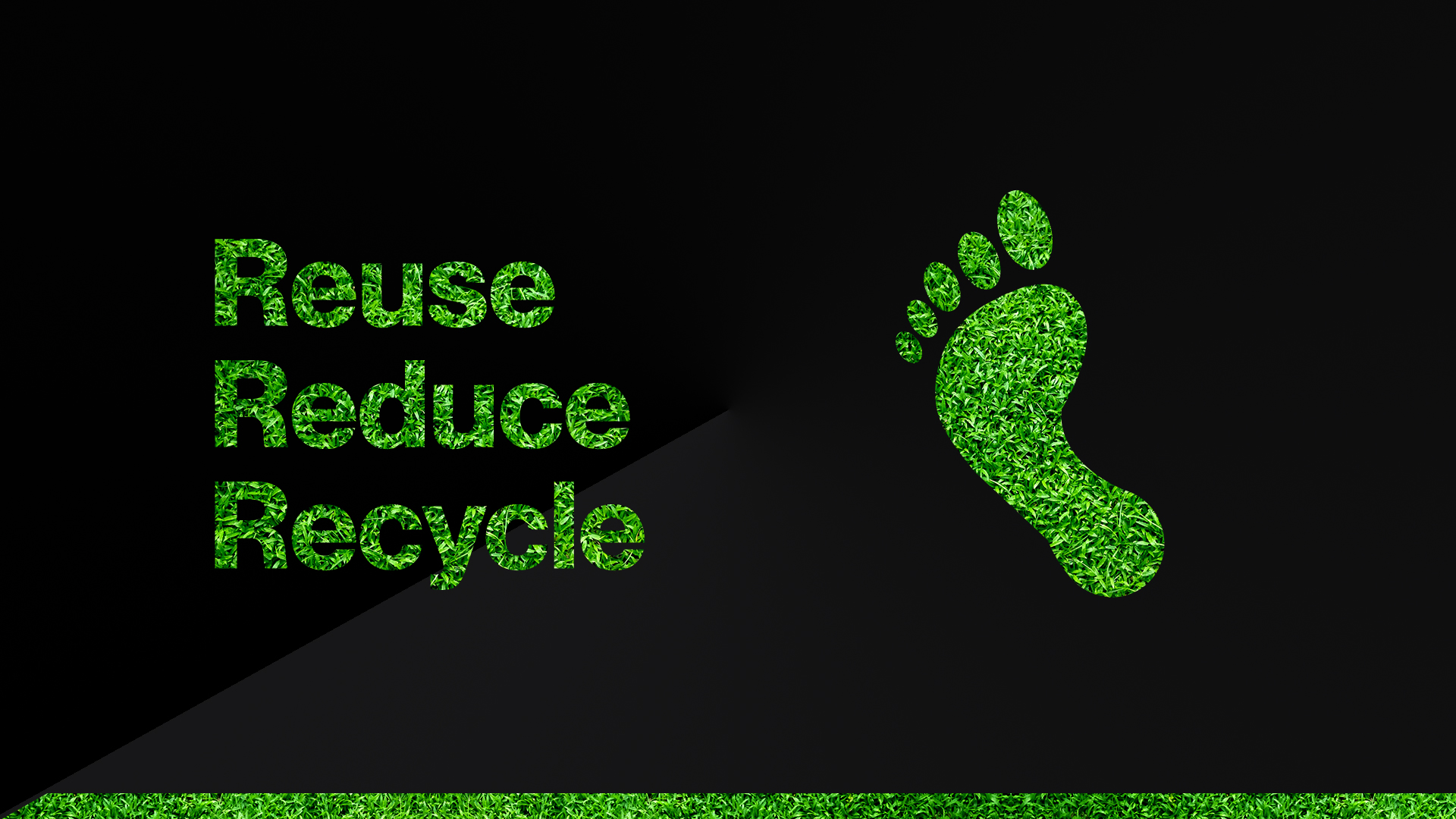 Reducing our carbon footprint and making FinTech eco-friendly